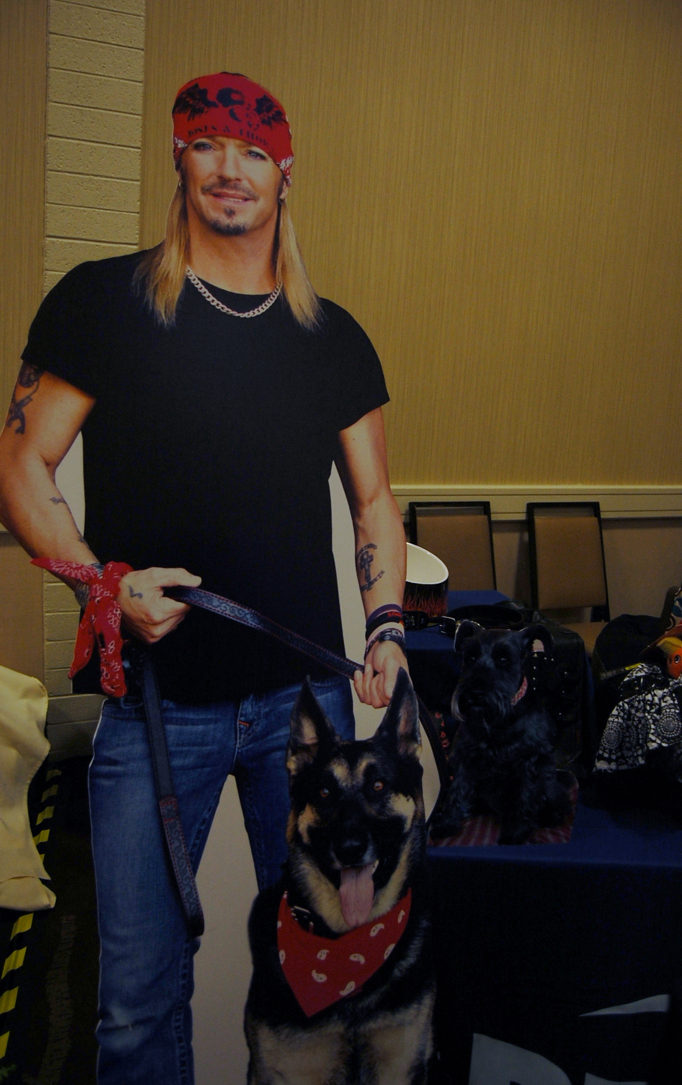Blogpaws wrap up in pictures part 2 the daily oskar for Jackson galaxy petsmart