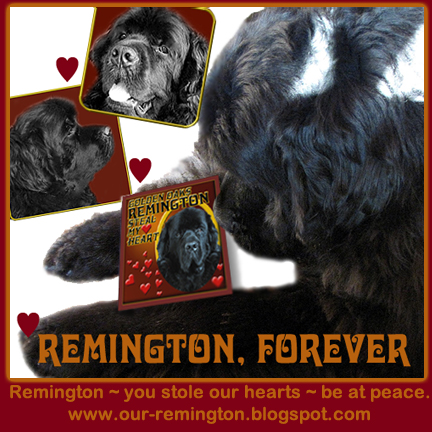 For Remington (Post)