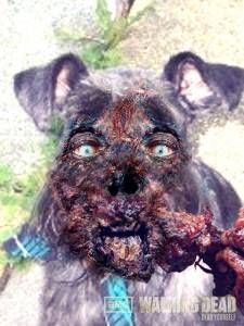 Zombie Oskar